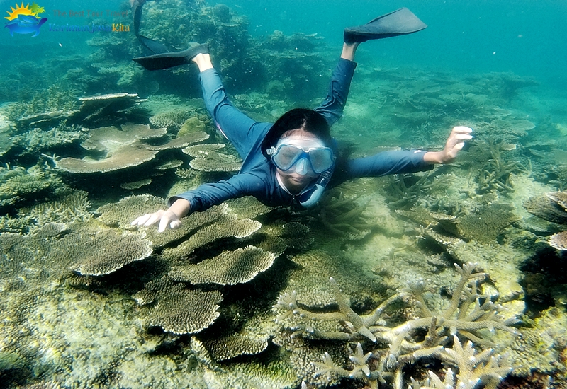 Letak Karimunjawa Posisi Dan Lokasi Pulau Karimun Jawa