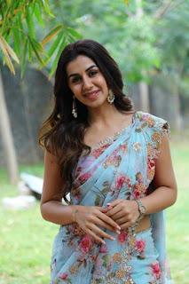 Actress Nikki Galrani Rajavamsam At Movie Audio Launch Stills