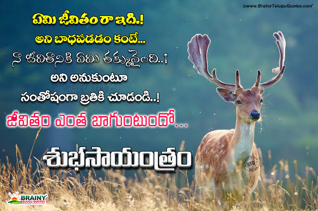 telugu quotes on success, best success words in Telugu, good evening quotes with hd wallpapers in Telugu