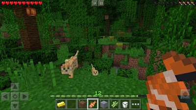 download game Minecraft Pocket Edition