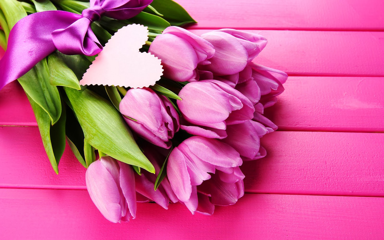 Roze tulpen in de lente