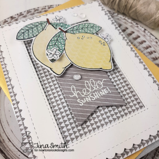 Hello Sunshine! Lemon Card by Tina Smith | Lemon Twist Stamp Set and Frames & Flags Die Set by Newton's Nook Designs #newtonsnook #handmade