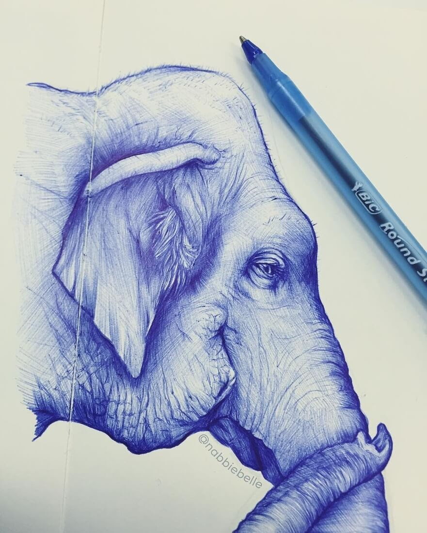 01-Elephant-Annabelle-Marie-Inked-Animals-Drawn-in-Ballpoint-Pen-www-designstack-co