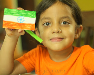 India Tricolor Flag Craft