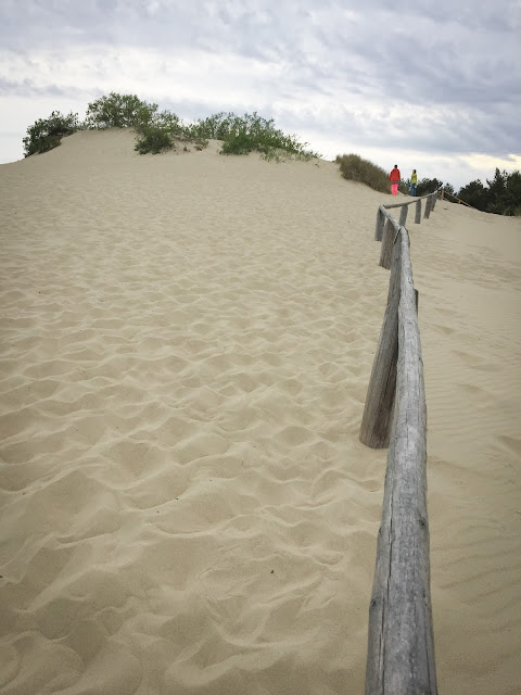 The sand dunes in Nida, Lithuania