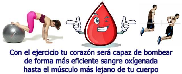 La calidad de la sangre mejora gracias al ejercicio físico