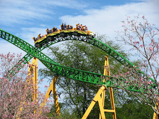 Cheetah Hunt Pictures and Review
