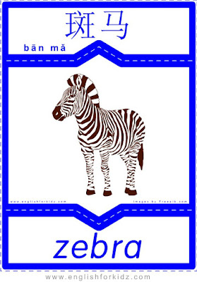 Zebra - English-Chinese flashcards for wild animals topic