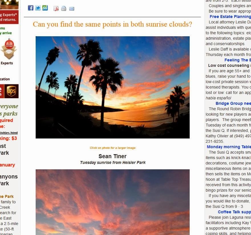 stu news laguna beach