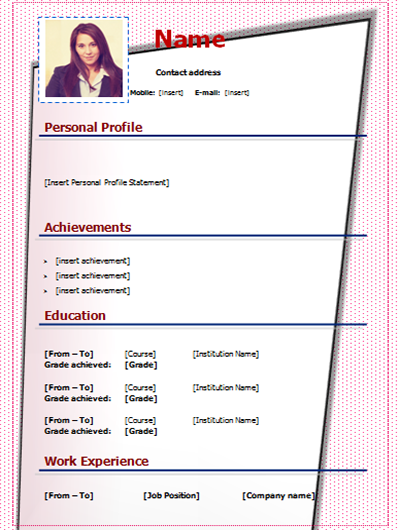 download cv doc word form template free stylish   picture