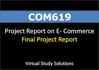 COM619 Project Report On E-Business - Final Project