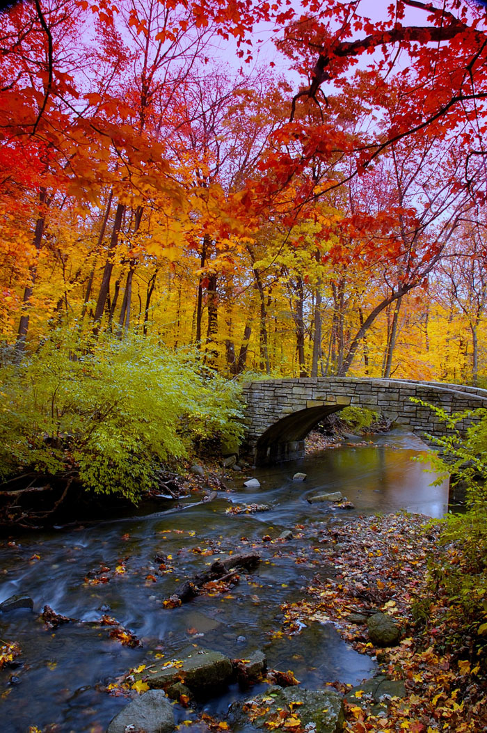 Inspired Admired: 100 Awe-Inspiring Fall Photos