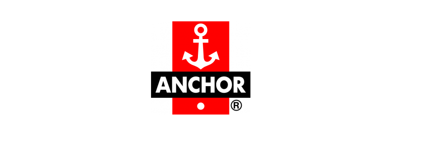 anchor Switches logo