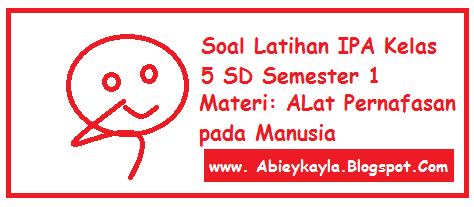 Soal Latihan Materi Alat Pernafasan Pada Manusia IPA Kelas 5 SD (15 Esay)
