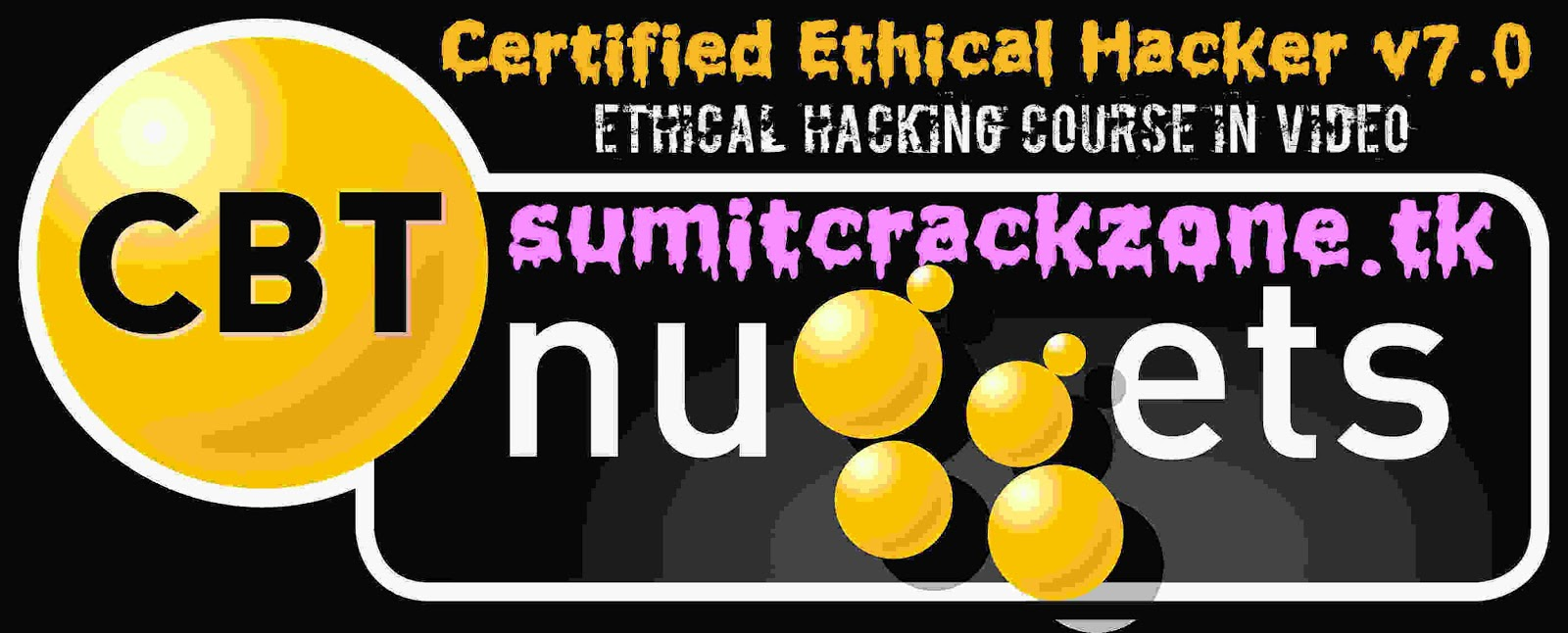 CBT NUGGETS EC Council Certified Ethical Hacker v7 0 !! James Conrad
