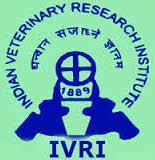IVRI Recruitment
