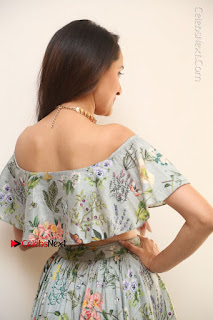 Actress Pragya Jaiswal Stills in Floral Dress at turodu Interview  0058.JPG