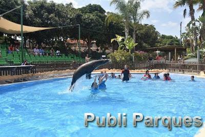 zooterapia en Terra Natura Murcia