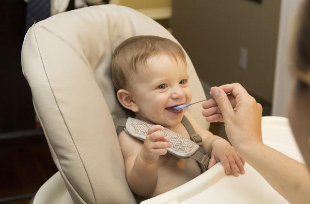 makanan bayi usia 11 bulan, cemilan bayi 11 bulan, makanan bayi, cemilan bayi, makanan bayi sehat, makanan bayi bergizi usia 11 bulan