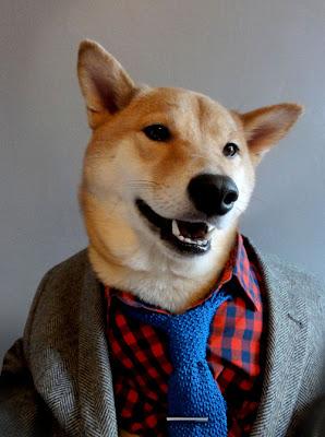 Fotomontaje con perro