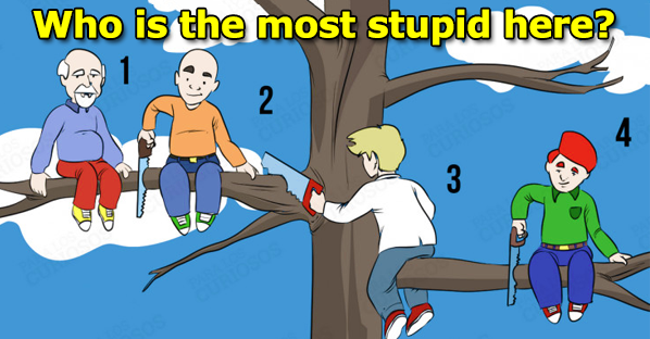 Who Is The Most Stupid Here? Each Of Your Choices Reveals An Aspect Of Your Personality!