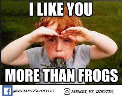 Like you more than frogs