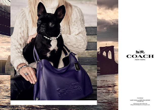Steven Meisel captures Miss Asia Kinney for Coach Fall 2015 ad campaign