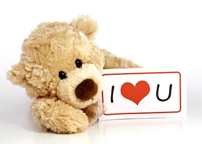 Cute Romantic I Love Teddy Bear Wallpaper