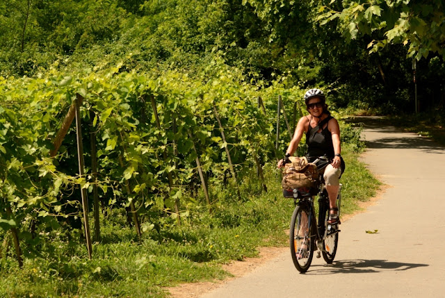 fietsen langs de Rhône, Rhône-vallei, Rhône-Alpes, Via Rhona, ViaRhôna, cote rotie