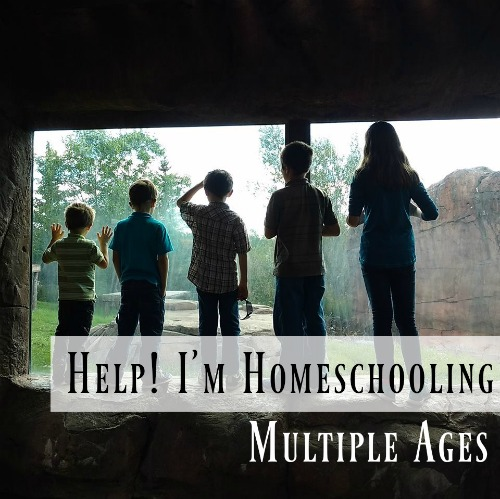 Help! I'm Homeschooling Multiple Ages
