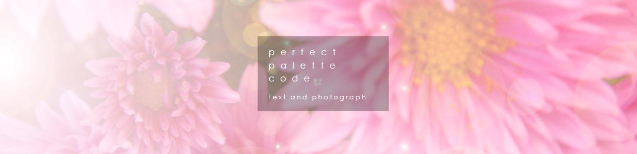 pefect palette code