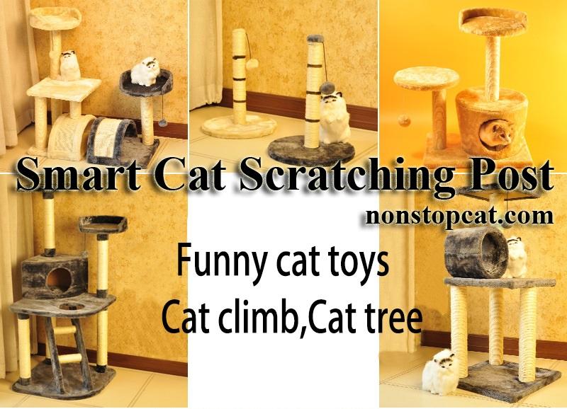 Smart Cat Scratching Post