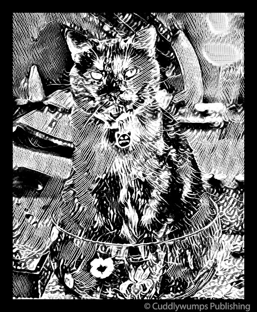 Real Cat Paisley_Acid Boost Super B&W_Jan 2018 #CaturdayArt