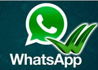 4 Cara Membaca Pesan Whatsapp Tanpa Diketahui Pengirim