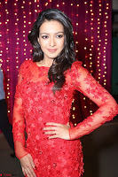 Catherine Tresa in red transparent gown at Zee Telugu Apsara Awards 2017 01.JPG