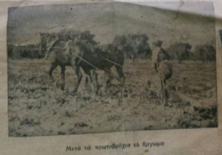 ΣΥΜΒΟΥΛΕΣ ΑΠΑΡΑΙΤΗΤΕΣ ΓΙΑ ΤΗ ΔΙΑΧΕΙΜΑΝΣΗ ΤΩΝ ΜΕΛΙΣΣΩΝ: Από τον Αγροτικό Ταχυδρόμο του 1935
