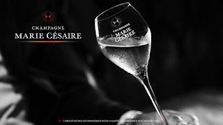 Marie Césaire Champagne by Marie-Inès Romelle