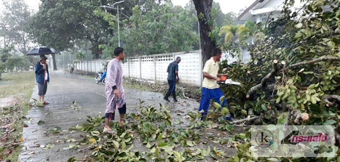 ฝนถล่ม!! ทำพิษตำบลกะลุวอเหนือ ต้นไม้หักโค่น ปิดทับทางขึ้น น้ำท่วมหมู่บ้าน