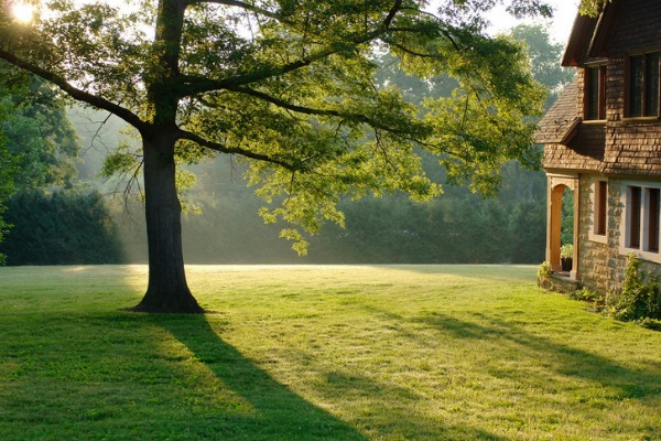 Fotografiar el jard n al amanecer guia de jardin - El jardin de lola ...