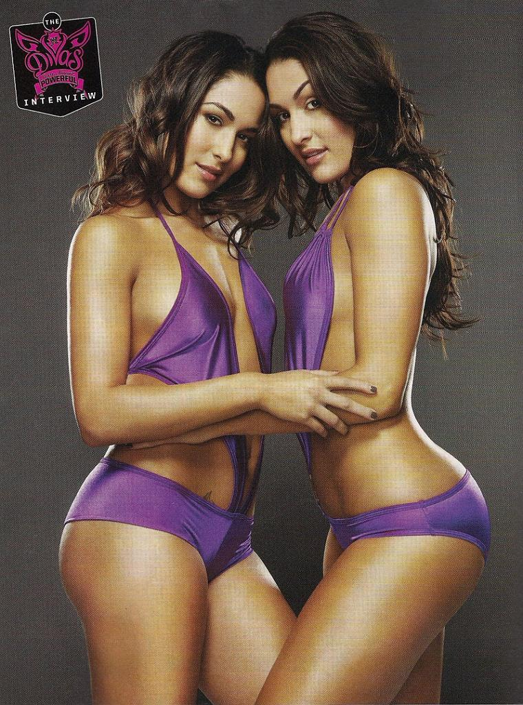 naked pics of wwe divas the bella twins