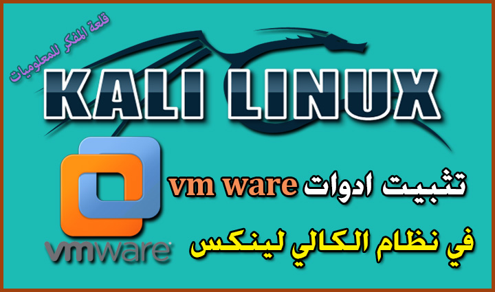 Install kali linux tools in VMware to maximize the screen and activate the file transfer between the two virtual systems and basic