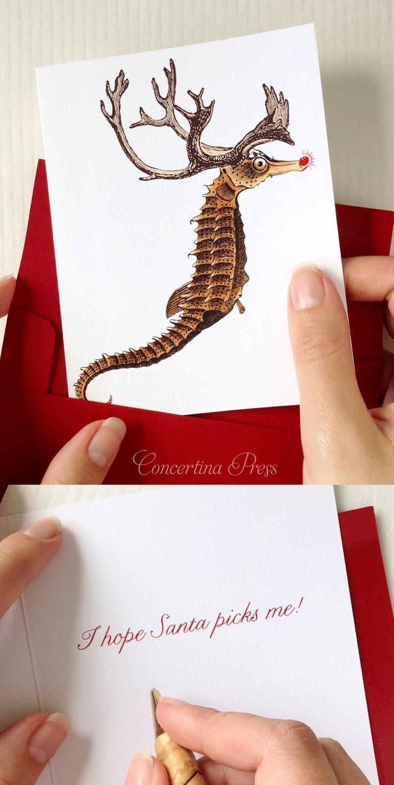 Seahorse Christmas Card Set from Concertina Press