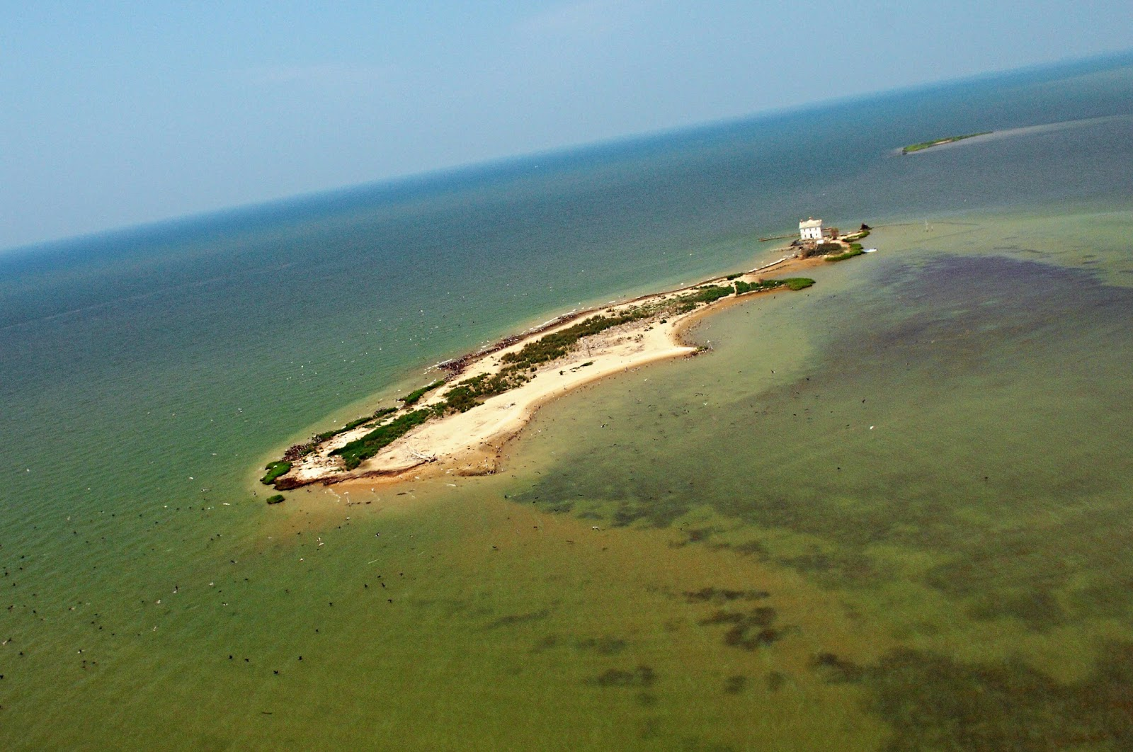 Deserted Places Holland Island in the Chesapeake Bay