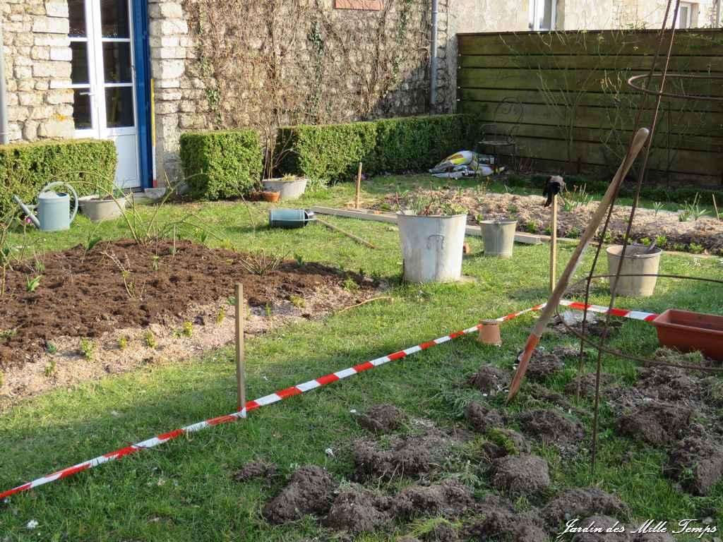 Planter Une Bordure De Buis c'est le printemps !