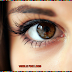 11 Easy And Handy Tips To Remove Fine Lines Under Eyes