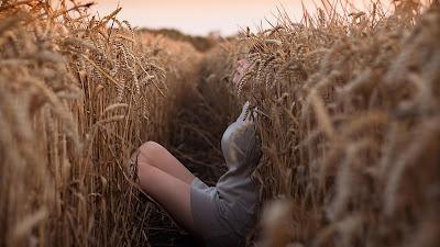 Chica acostada en campo de trigo