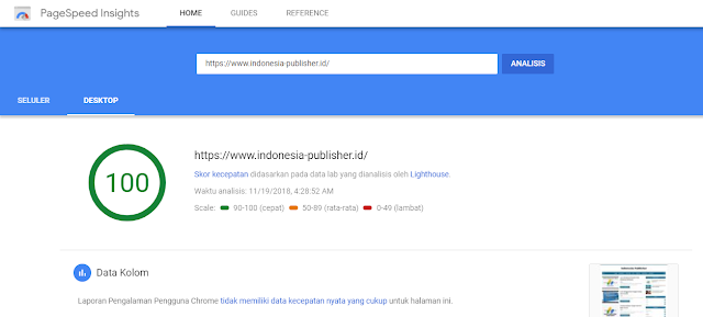 kecepatan situs menggunakan pagespeed insights