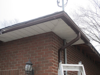 White soffit and chestnut brown eaves and downspout