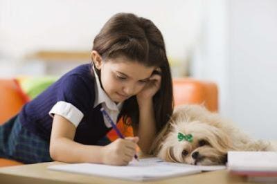 Contoh Soal dan Kunci Jawaban Pilihan Ganda Latihan 6