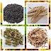 Menggunakan Tanaman Herbal Dari Cina Untuk Mengobati Penyakit